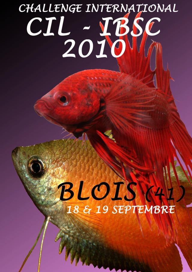 Blois, finale du Challenge International 2010. Affich10