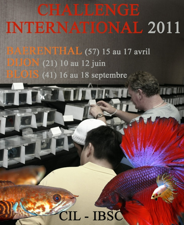 Challenge International 2011, BLOIS, finale. Affich11