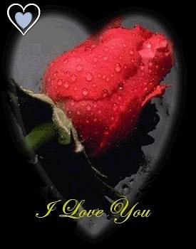 صور رومانسية 45oj10