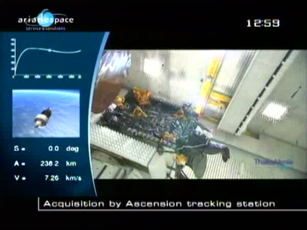 Ariane 5 ECA V196 / RASCOM-QAF 1R + Nilesat 201 (4 août 2010) - Page 4 Vlcsna19