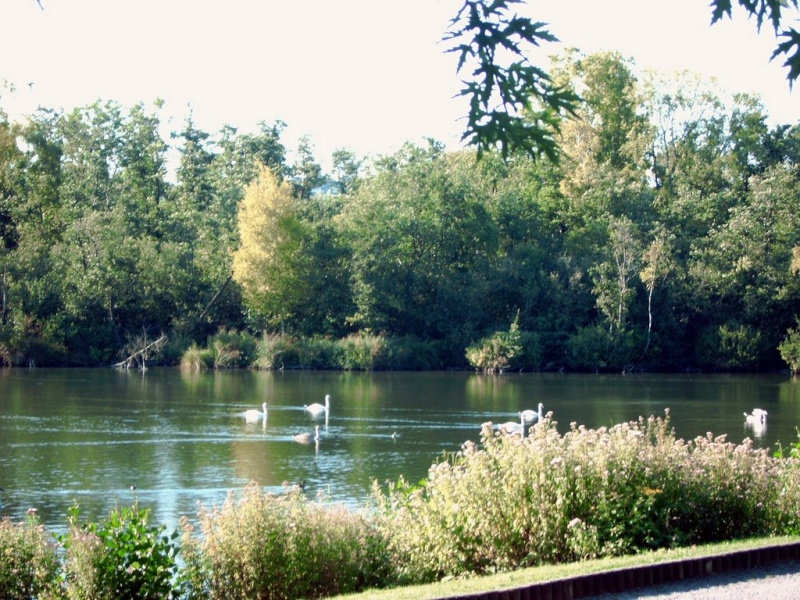 Parc d'isle à Saint Quentin Marais10