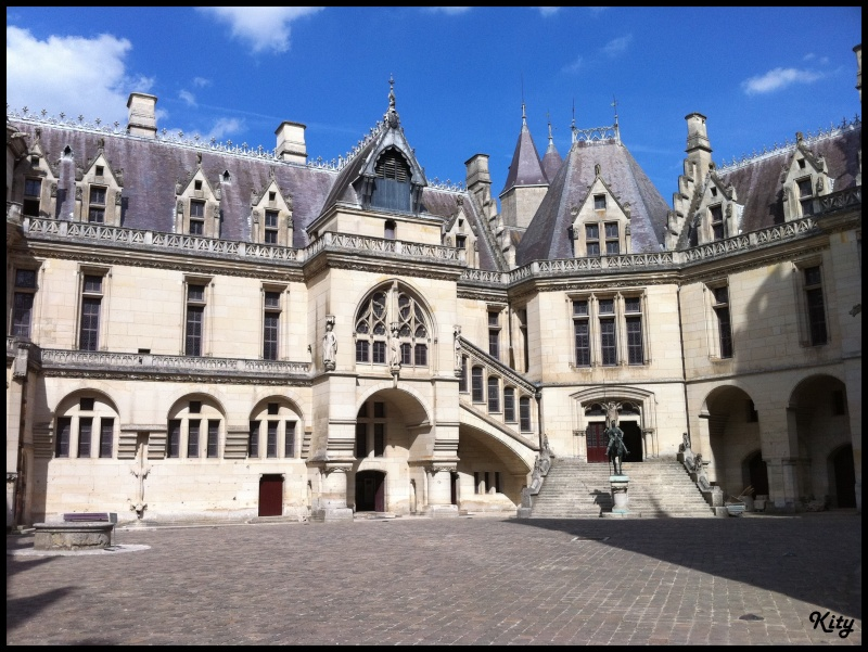 Visite de château,et mini rasso - Page 4 Img_0448