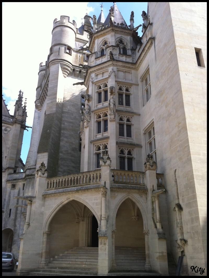 Visite de château,et mini rasso - Page 4 Img_0450