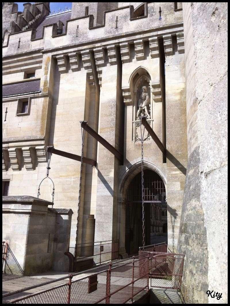 Visite de château,et mini rasso - Page 4 Img_0610