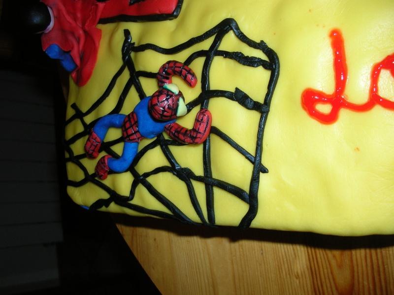 Superman Dscn5513