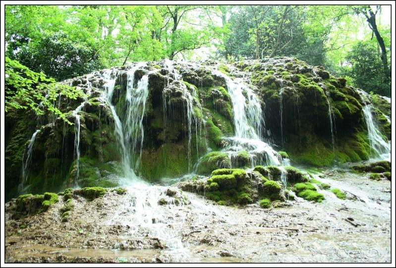 Vallée de St Pons près de Gémenos (13) Img_9513