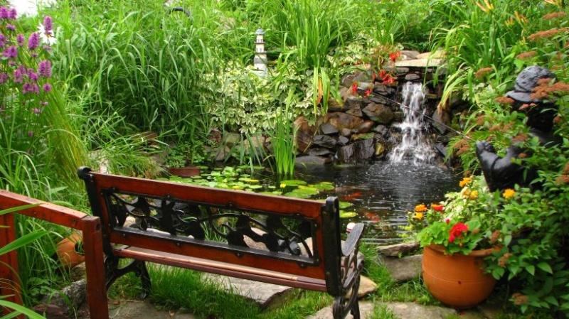 Votre photo pour Octobre 2008 - Page 2 Jardin10