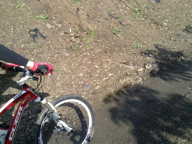 9-1-2011 Rincon-chilches-almayate-rincon 09012018