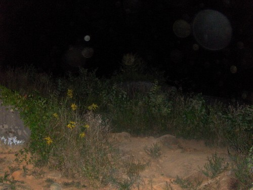 Any Gostie pics,orbs or unexplainable pictures Devils11