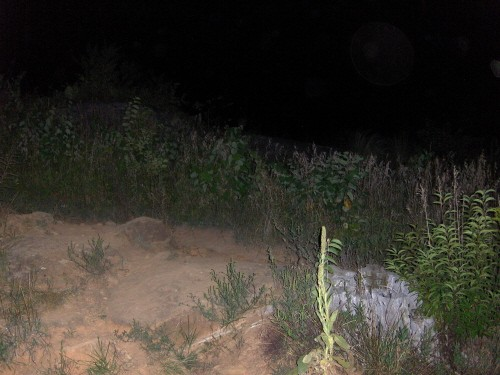 Any Gostie pics,orbs or unexplainable pictures Devils15