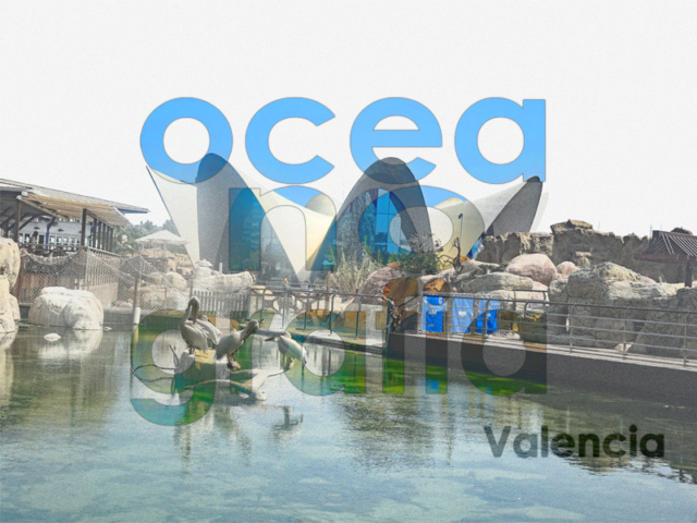 2018-39 Challenge des Invités - un mot - une photo  - Page 3 Oceano11