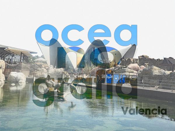 2018-39 / Challenge des Invités - un mot - une photo  - Page 3 Oceano13