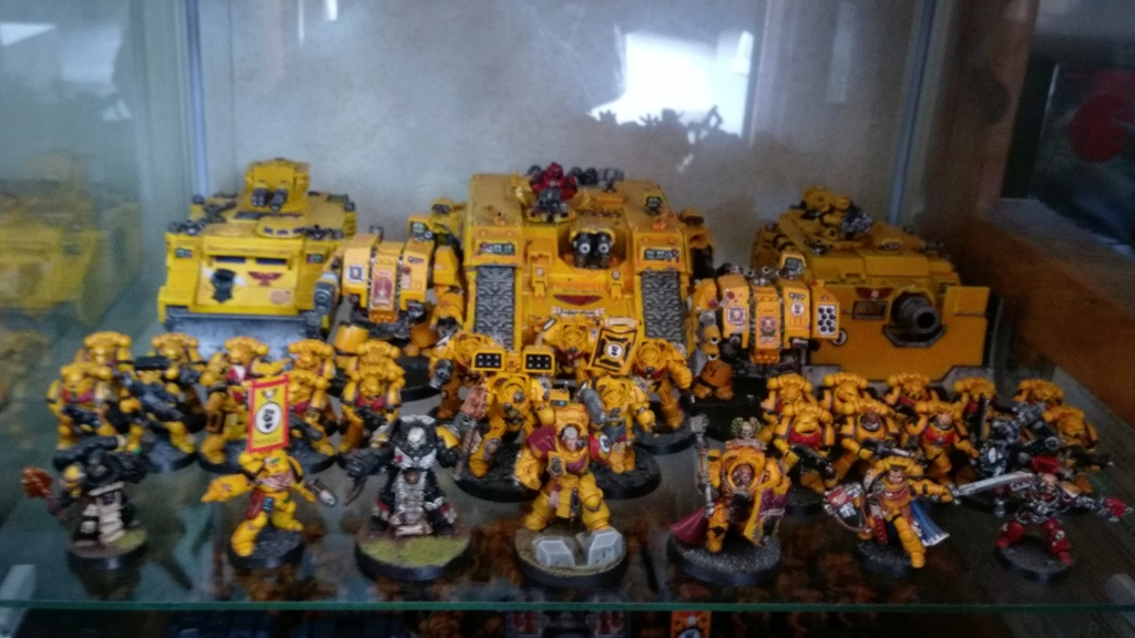 Galerie d'Imperial Fist - Page 3 3710