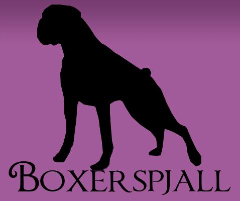 Boxer spjallið