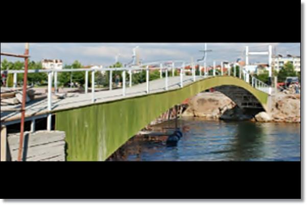 Yeni Köprü'ye Yeni İsim Aranıyor Daqm7810