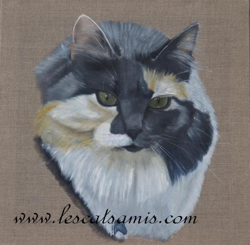 Cathy peintre animalier - Page 6 Chat10
