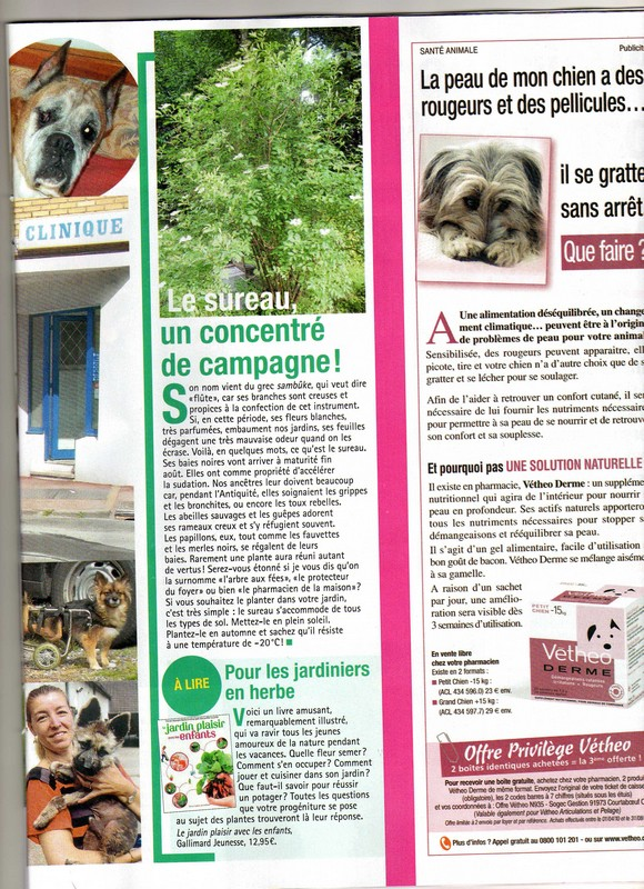 Cani-Nursing dans France Dimanche Articl11