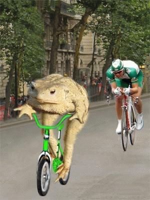 Le podium..3eme étape.. 8l803710
