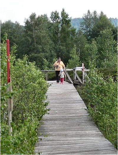 Les ponts de Martel Xiloph11