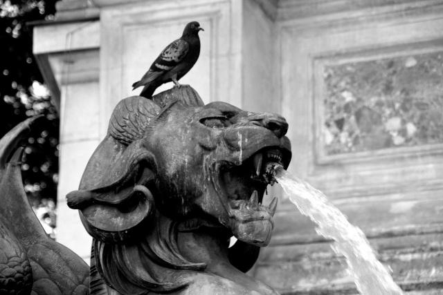 Paris en couleurs , Paris en noir et blanc ! - Page 2 Img_5714