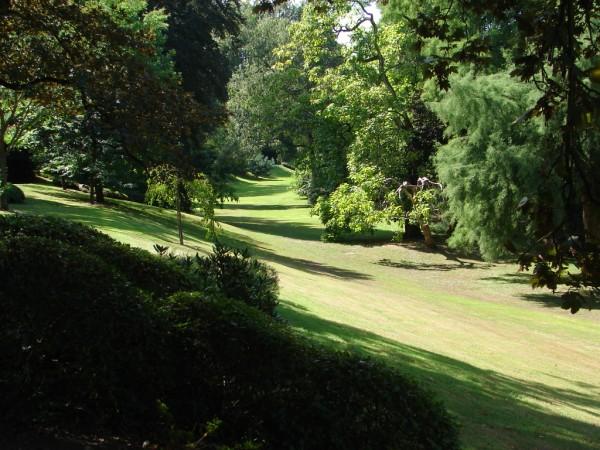 Parc oriental de Maulévrier (Loire-atlantique) Parc10