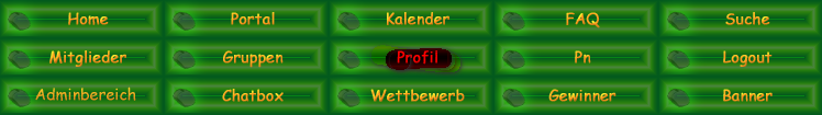 Der Profil-Button wird nicht angezeigt Profil10