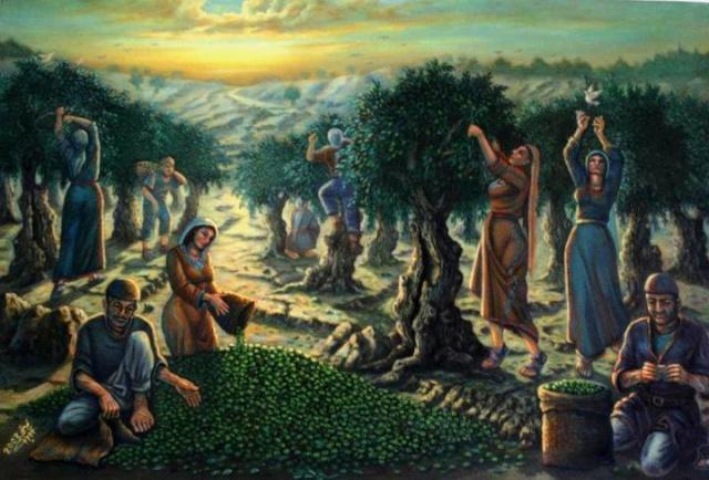 موطنى   فلسطين  لوحة جني الزيتون للفنان فتحي غبن 28469310