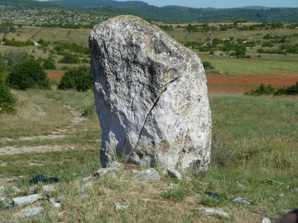 mégalithes en Languedoc-Roussillon 2010_013