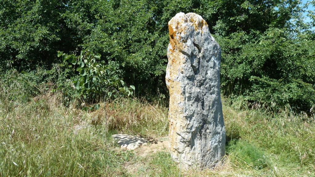 mégalithes en Languedoc-Roussillon P1090012