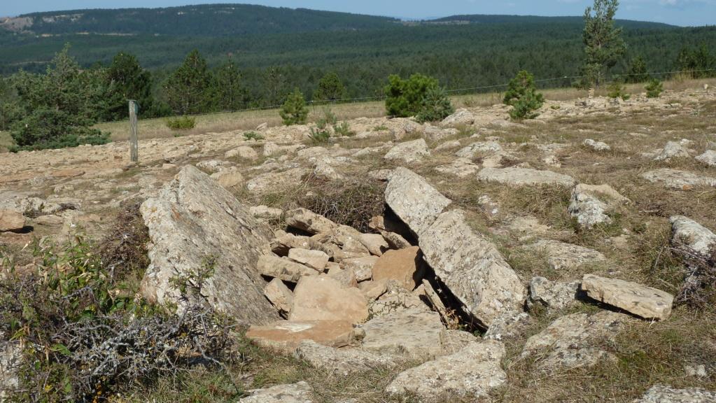 mégalithes en Languedoc-Roussillon P1110013