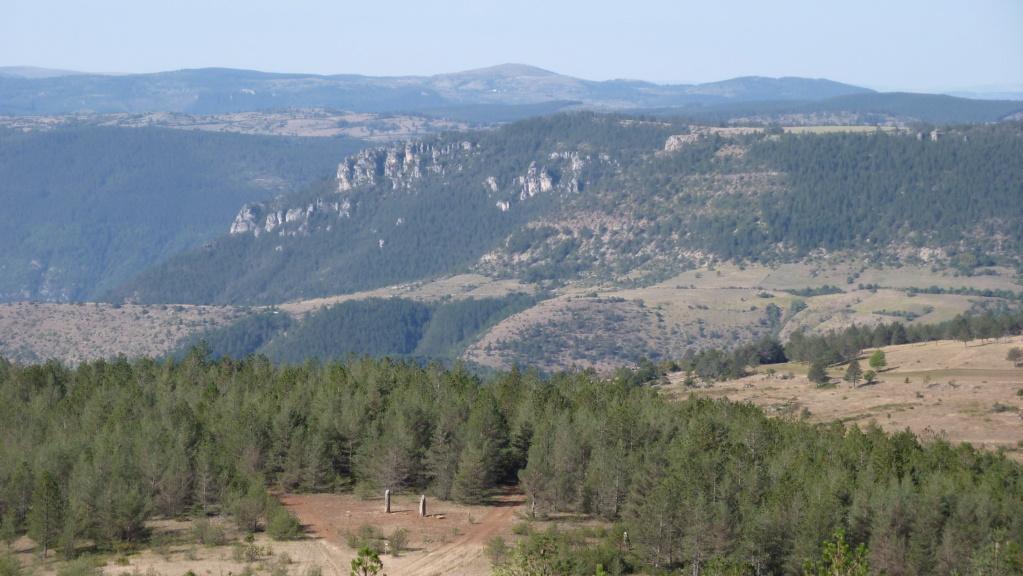 mégalithes en Languedoc-Roussillon P1110014