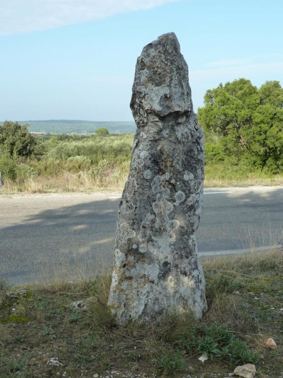 mégalithes en Languedoc-Roussillon P1110321