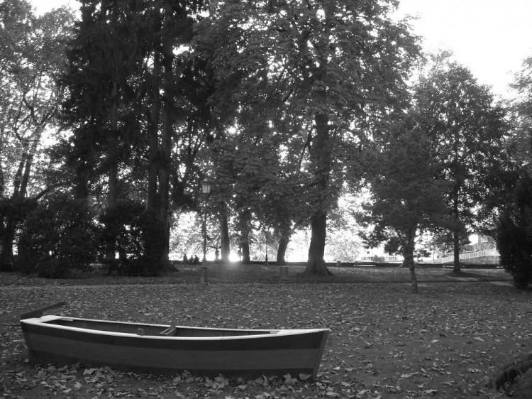 Barques échouées 12534110