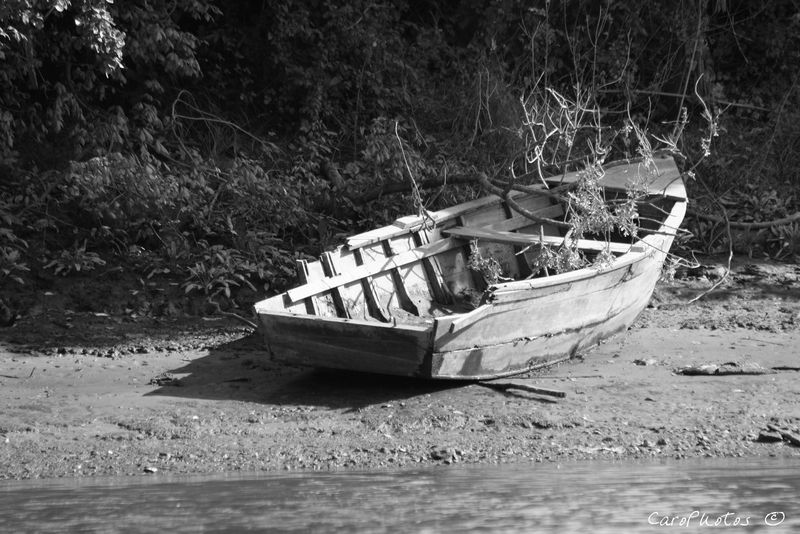 Barques échouées 42287110