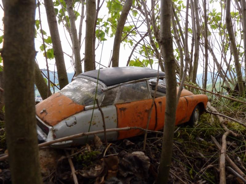 Appel à la nostalgie des épaves automobiles 51174511