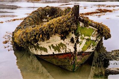 Barques échouées Barque12
