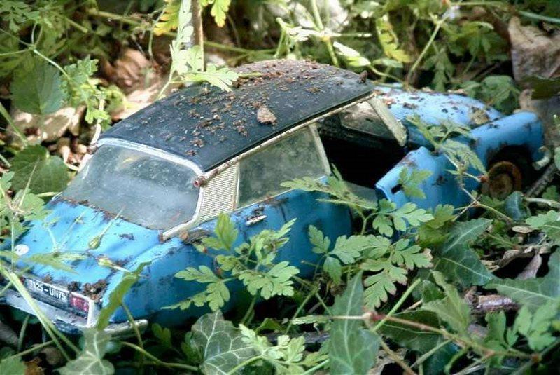 Appel à la nostalgie des épaves automobiles Ds_sol10