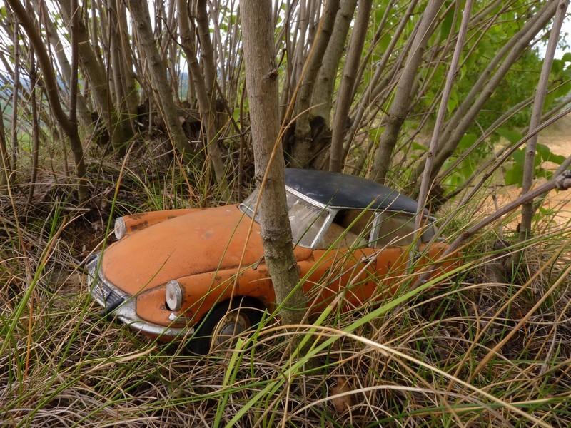 Appel à la nostalgie des épaves automobiles Epaves11