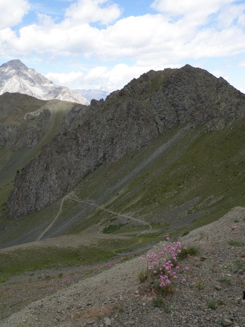 Le Chenaillet une journée géologie Queyra33