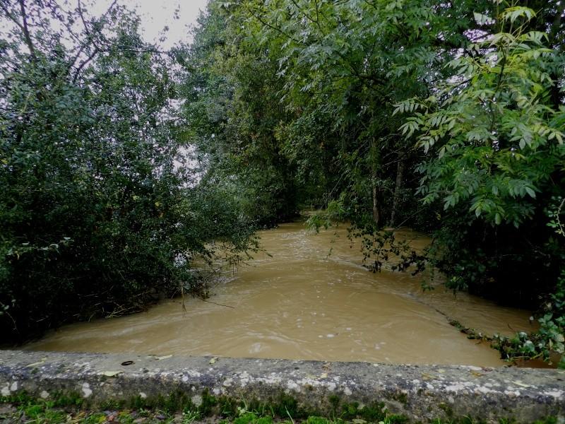 Octobre 2012, la rivière sort franchement de son lit Vauvar32