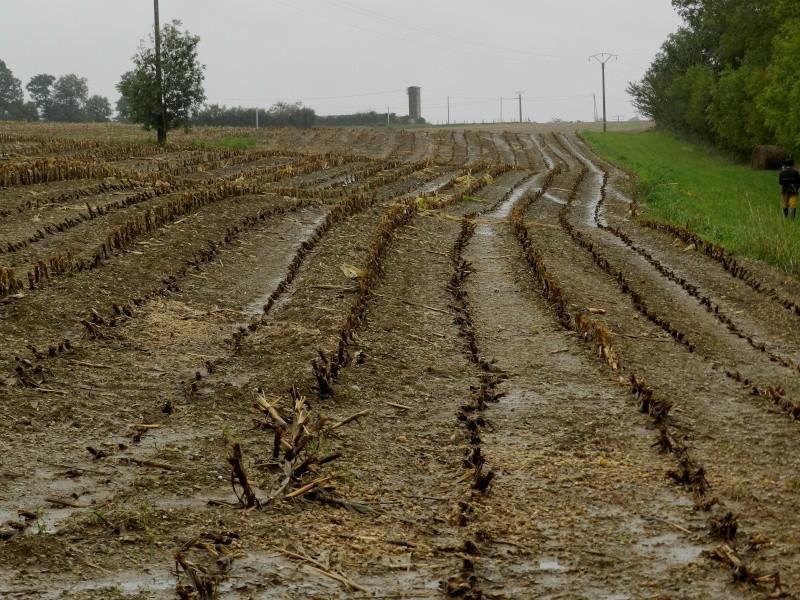 Octobre 2012, la pluie transforme le paysage  Vauvar33