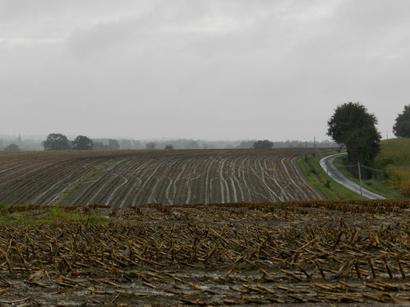 Octobre 2012, la pluie transforme le paysage  Vauvar39