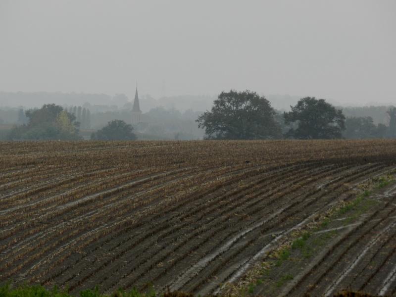 Octobre 2012, la pluie transforme le paysage  Vauvar40