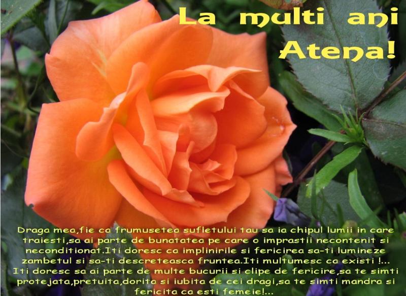La Multi Ani ! - Pagina 2 Atena-10
