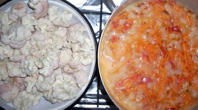 Ciorbe,supe, borsuri de legume si cu carne Ciorba11