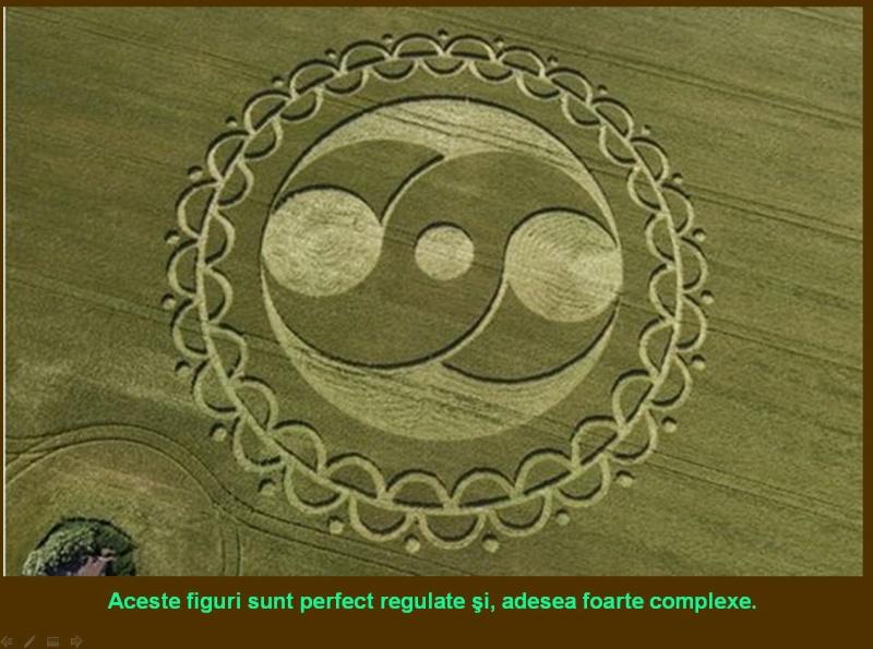 Agroglifele-desenele circulare din lanurile de cereale Clip_118