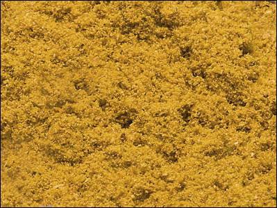 Sa cunoastem condimentele Terrei Clip_833