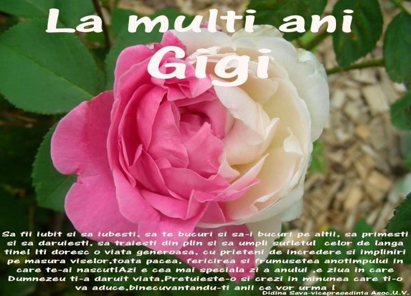 La Multi Ani ! Gigi10