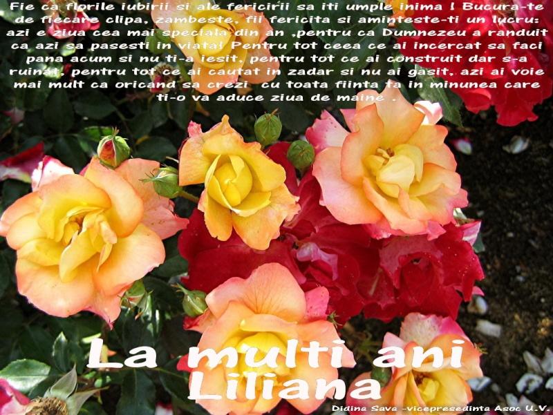 La Multi Ani ! Lilian12