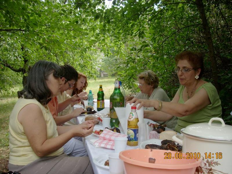 Picnic cultural-28 august 2010-azi ne reamintim  de Arghezi si Cosbuc  Picnic28